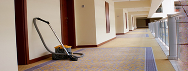 Trust Carpet Amp Tile Cleaning Servicing Simi Valley